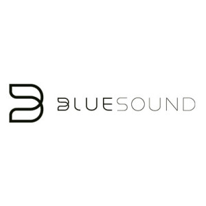 littleguys_brands_bluesound