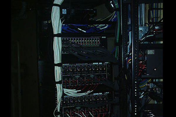 The Little Guys Back of the Rack